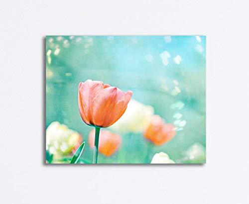 456Yedda Canvas Print Canvas Art Wrap Flower Tulips Photography Peach Mint Print Orange Aqua Blue Nature Floral Coral Cream Photograph Garden of Dreams Bedroom Bathroom Decoration Wall Art Wall Decor