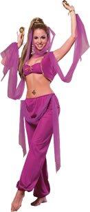Arabian Costumes For Women (Arabian Princess Adult Costume Set)