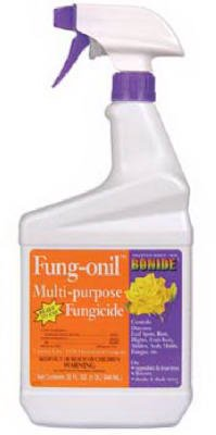 Bonide Product Bonide # 883 32 oz Fung-Onil Ready To Use ...