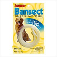 COLLARS BANSECT DOG, My Pet Supplies