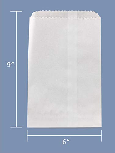 6 x 9 Inch Hygloss Products Pinch Bottom Arts and Crafts Paper Bags 100 Pack White