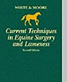 img - for Current Techniques in Equine Surgery and Lameness, 2e book / textbook / text book