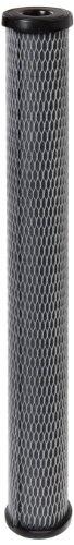 Pentek C1-20 Carbon-Impregnated Cellulose Filter Cartridge, 20
