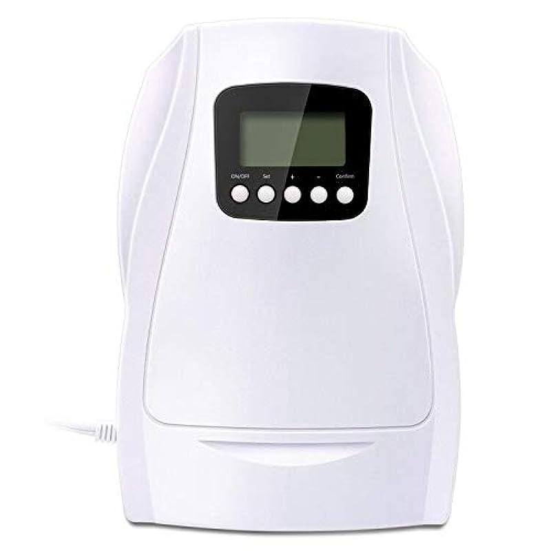 이온 오존 발생기 500mg / hr 물 공기 탈취 살균