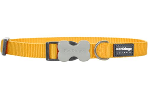 Red Dingo Dog Collar, Large, Yellow