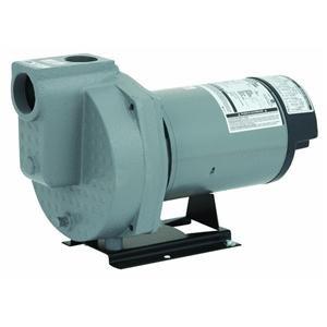 (Flint Walling/Star HSPJ20P1 Do It Best Sprinkler Pump, 2Hp)