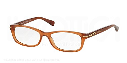 Coach Elise Eyeglasses HC6054 5251 Milky Saddle 50 16 135