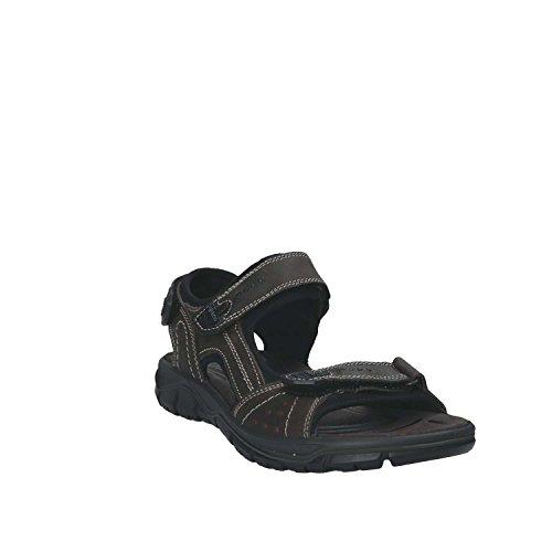IGI Co 1130 Sandals Man Grey 42 vWJ68