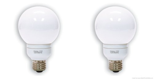(GE Lighting 47484 11 Watt, 40-Watt Equivalent, Energy Smart G25 Globe CFL 9 Year Life Light Bulb- 2 Pack)