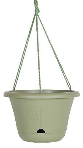 Bloem Lucca Self Watering Hanging Basket, 13