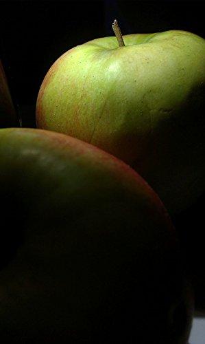Home Comforts Laminated Poster Vitamin C Apple Green Fiber Fruit Apples Vitamin Poster Print 11 x 17