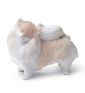 Amazon.com: Lladro Pomeranian Perro: Home & Kitchen