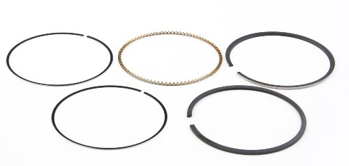 Briggs & Stratton 791969 STD Ring Set Replacement Part