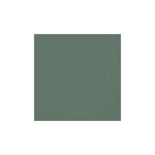 サンゲツ 壁紙24m シンプル 無地 グリーン Pick Up Wallpaper RE-2413 B06XKMHHZL 24m|グリーン