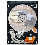Seagate EE25.2 Series 40 GB Internal hard drive Serial ATA-150 2.5