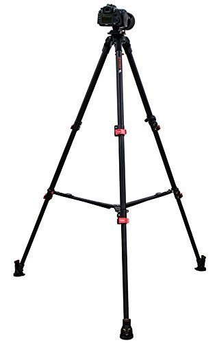 iFootage Portable and Heavy Load Professional Tripod Wild Bull T5 with Carrying Case by IFOOTAGE