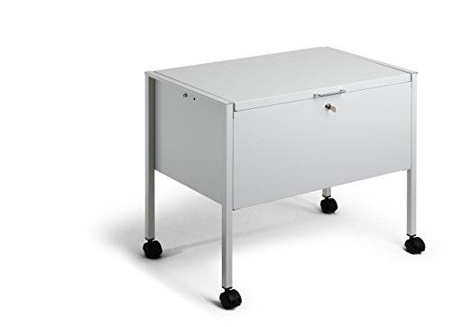 Durable 309710 - Carrito para archivadores (capacidad de 80 carpetas colgantes), color plateado: Amazon.es: Oficina y papelería