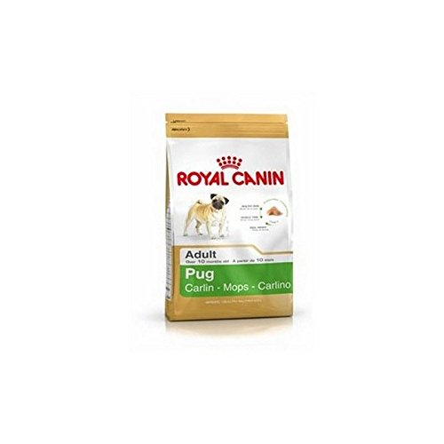 Royal Canin Adult Complete Dog Food for Pug (1.5kg) (Pack of 2)