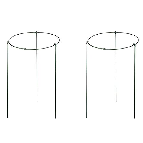 (2 Pack Garden Plant Support Rings for Potted Plant, 9.8