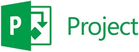 Microsoft Project Server CAL, Pack OLP NL, License & Software Assurance, 1 user client access license,
