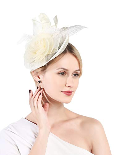 Fascinators hat for Women Tea Party Hat Kentucky Derby Wedding Cocktail Flower Mesh Feathers Headband and Clips