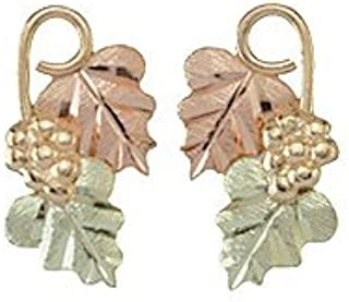 product image for Black Hills Gold 10K Earrings from Coleman