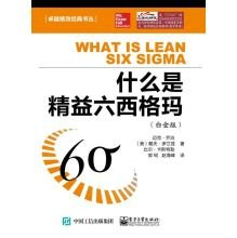 What is Lean Six Sigma (Platinum Edition)(Chinese Edition)