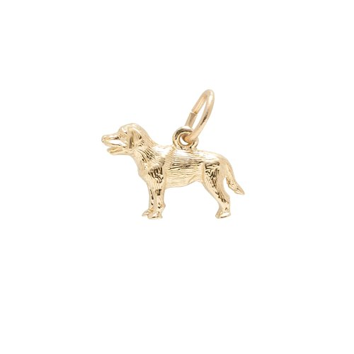 Rembrandt Charms, Labrador, 22K Yellow Gold Plated - Plated Pendant Charm Gold