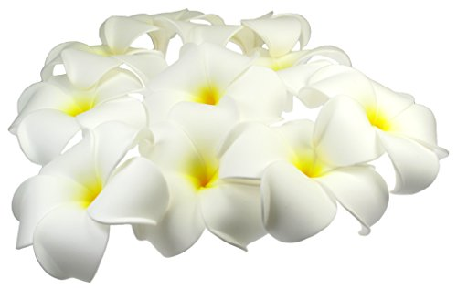 Artificial Floating Plumeria (Frangipani) Foam Flower, 10-Pack, Approx. 3