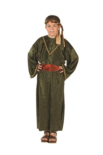 Wiseman - Olive Velet - Child Small (4-6) Costume by RG Costumes ()