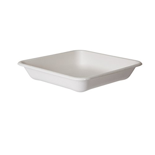 Bulk Take Out Containers, WorldView Renewable and Compostable Sugarcane Take-Out Container, 8'' Square: Eco-Products EP-SCS8T (600 Take Out Containers)
