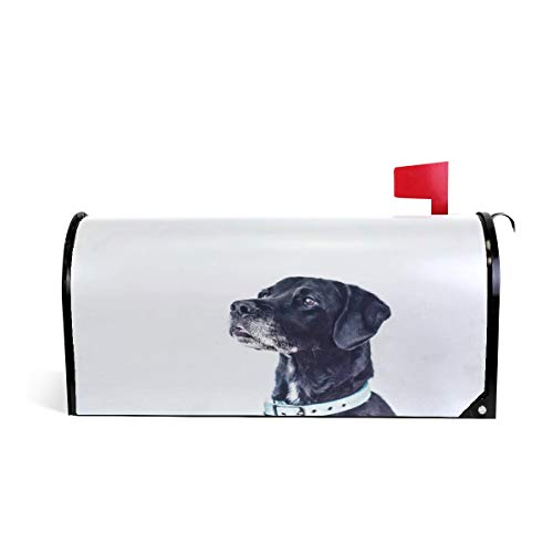 Fengye Black Dog View Mailbox Magnetic Cover Medium Large Capacity Post Box Covers 25.5 x 20.8 inch Oversized