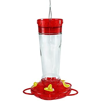 Durable Hanging Bottle Glass Hummingbird Red Feeder Attract More Hummingbirds to Your House and Outdoor Garden Watch Hummers from Your Window Features 5 Red Flower Feeding Ports 11 Fluid Oz Capacity