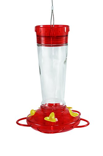 Ground Feeder Roof (Durable Hanging Bottle Glass Hummingbird Red Feeder Attract More Hummingbirds to Your House and Outdoor Garden Watch Hummers from Your Window Features 5 Red Flower Feeding Ports 11 Fluid Oz)
