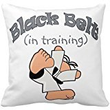Throw Pillow Training (Kids Karate Sport Black Belt In Training Throw Pillows 20 X 20 Two Sides Bedding Home Decoration Square Throw Pillow Case Decorative Cushion Cover Pillowcase)
