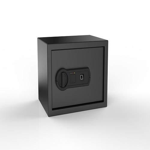 AmazonBasics Caja fuerte biométrica de huellas dactilares, 1.52 pies cúbicos