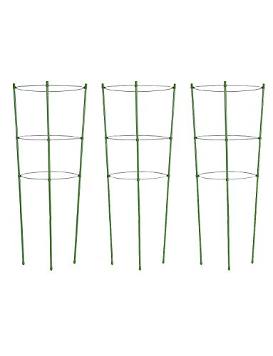Tingyuan Plant Support Cages 18 Inches Plant Cages with 3
