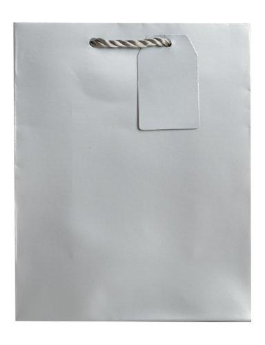 Jillson Roberts Bulk Medium Gift Bags Available in 19 Colors, Silver Matte, 120-Count (BMT914) by Jillson Roberts