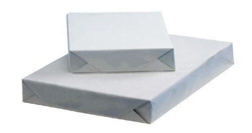 Alvin 12'' x 18'' Premium Heavyweight Mechanical Cream Drawing Paper (9040-3)