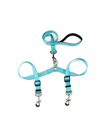 DCBark Double Dog Leash, Premium Quality No-Tangle Leash for 2 Dogs (M, Turquoise) by DCBark