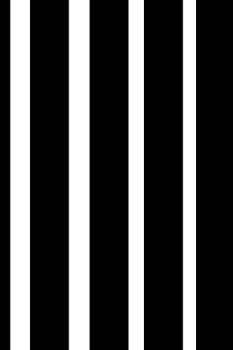 Guide To Graduation 2017-2018 Academic Year Daily Planner: 6x9 in. monthly and weekly student planner - vertical black and white stripes pdf epub