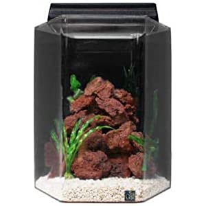 SeaClear Acrylic Hexagon Aquarium