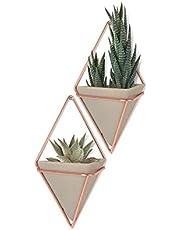 Umbra Trigg Hanging Planter Vase & Geometric Wall Decor Container, Set of 2, Small, Concrete/Copper