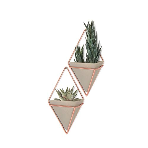 Umbra Trigg Hanging Planter Wall Decor Set, for Displaying Small Plants, Pens and Pencils, Makeup Accessories and More, Set of 2, Concrete/Copper