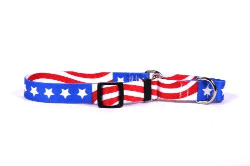 Americana Martingale Control Dog Collar product image