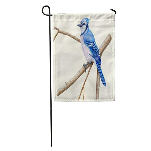 Semtomn Garden Flag Watercolor Bird Blue Jay Brown Paint Watercolour Tree Branch Audubon Home Yard House Decor Barnner Outdoor Stand 12x18 Inches Flag