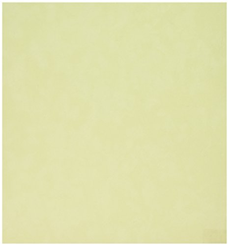 Sew Easy Industries 12-Sheet Velvet Paper, 12 by 12-Inch, Mint by Sew Easy Industries