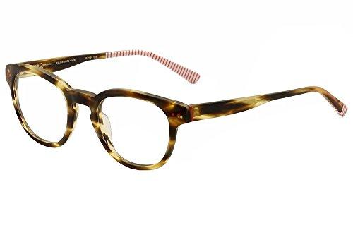 Williamsburg Eye Care