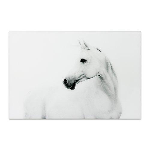 Empire Art Direct White Horse 2 Frameless Tempered Glass Black and White Wall Art, 48