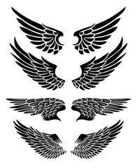 Diseño de tatuaje de alas de (71828321), lona, 20 x 30 cm: Amazon ...